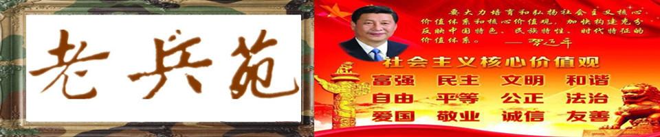 中国老兵苑军网